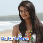 Hai Dil Ye Mera Song Lyrics – Hate Story 2 (2014)