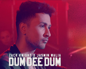 Dum Dee Dee Dum Lyrics – Zack Knight